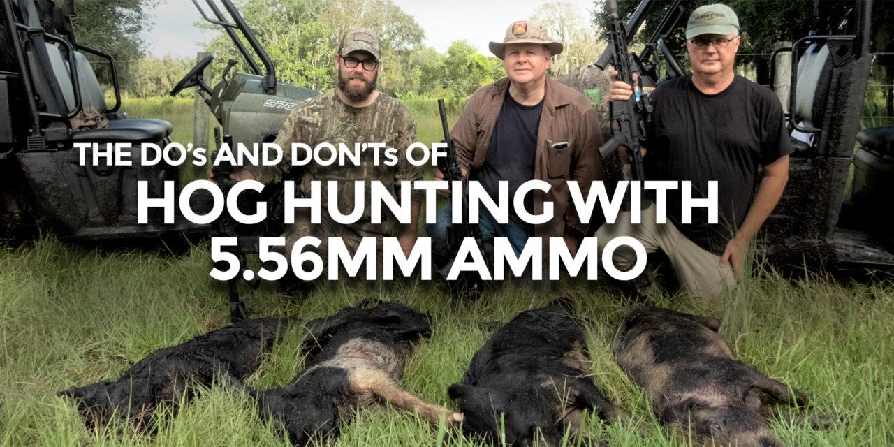 5.56mm Hog Hunting Ammo