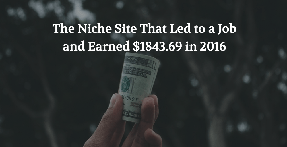 The Niche Site That Led to a Job and Earned $1843.69 in 2016