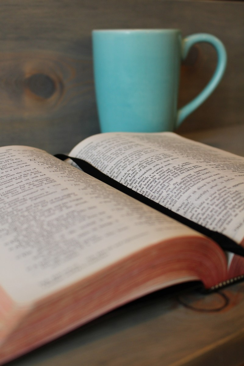 3 Super Simple Bible Study Techniques