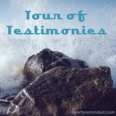 TourofTestimoniesSQ