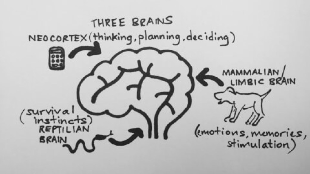 three-brains