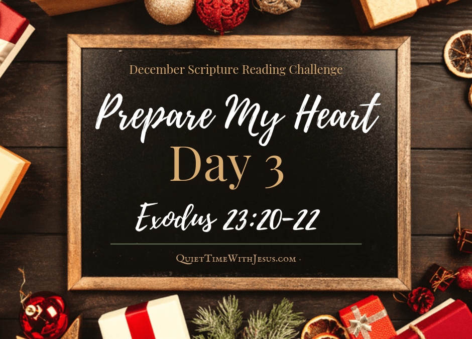 Prepare My Heart – Day 3: He Will Lead You