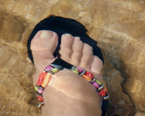 Quilly toes