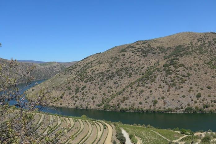 Pela N222 entre o Côa e o Douro