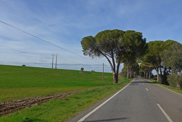 Estrada N2. Entre o Escoural e Castro Verde.