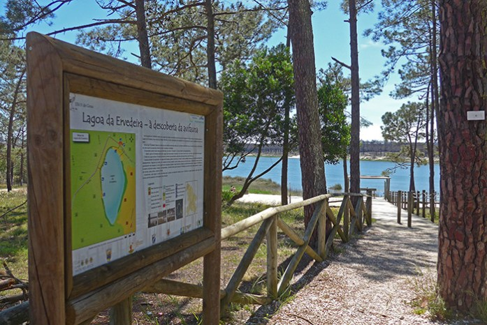 Lagoa da Ervedeira. Estrada Atlântica