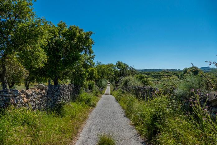 Estrada de acesso à Anta da Melriça