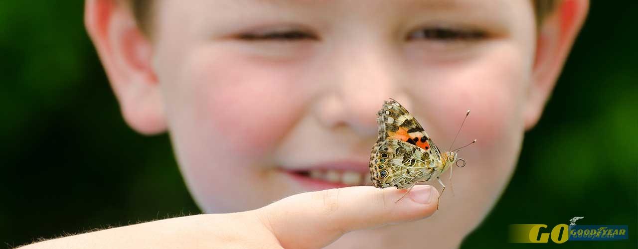 Criança e borboleta