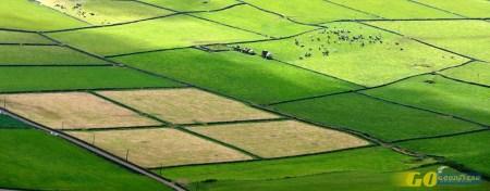 Ilha Terceira: em torno do Algar do Carvão