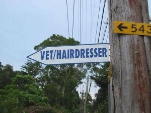 denistone-sign-vet-hairdresser-usg