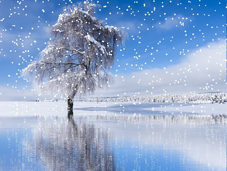 winter-2576614__340