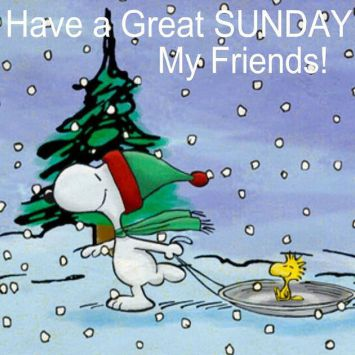 290654-Have-A-Great-Sunday-My-Friends