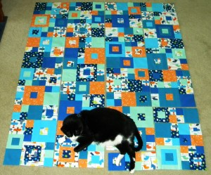 Seeing Squares - Puppy with Piecing for Top