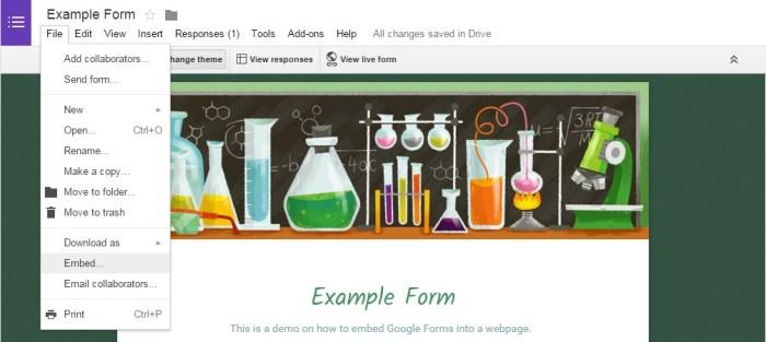 Google Form Embed