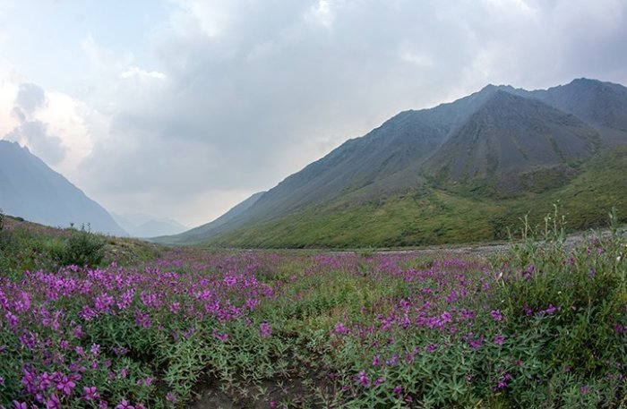 Brooks Range, Alaska, photograph by Michael Fuchs