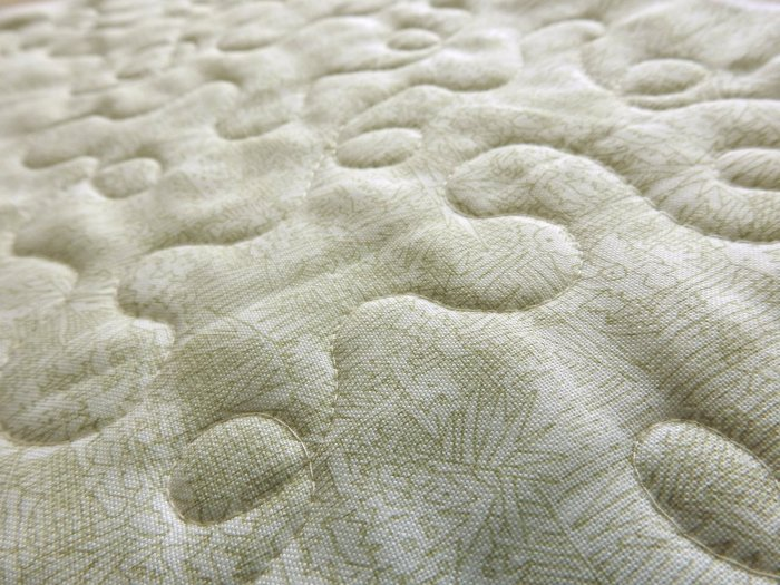 Free Motion Quilting Sample