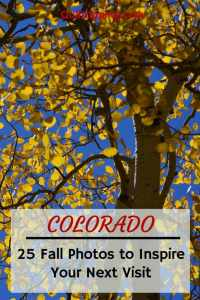 25 photos to inspire a search for golden aspens in Colorado #colorado #goldaspens #autumn #autumnincolorado
