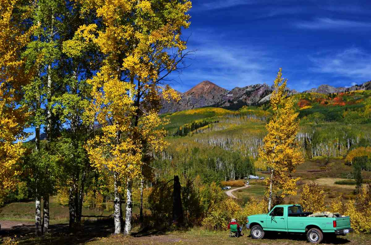 Hunting for Gold in Colorado – Aspen Gold