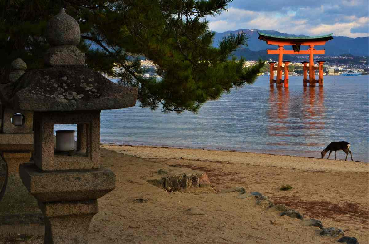 A Day in Miyajima - Japan's Most Sacred Island