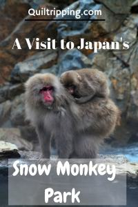 Visit Japan's Snow Monkwy Park #japan #snowmonkeypark
