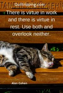 There is virtue in work and there is virtue in rest #istanbul @cts #istanbulcats #quote