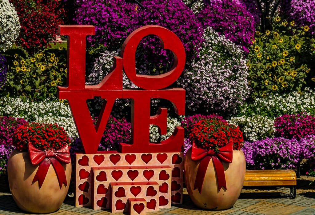 Feeling the Blooming Love in Dubai's Miracle Garden Oasis