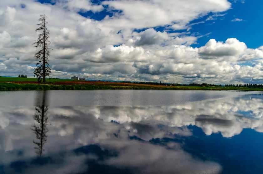 Reflection in the Tualatin Valley, Oregon