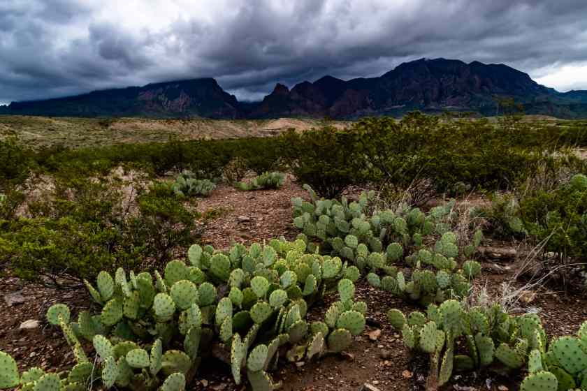 The Chisos mountains under clouds