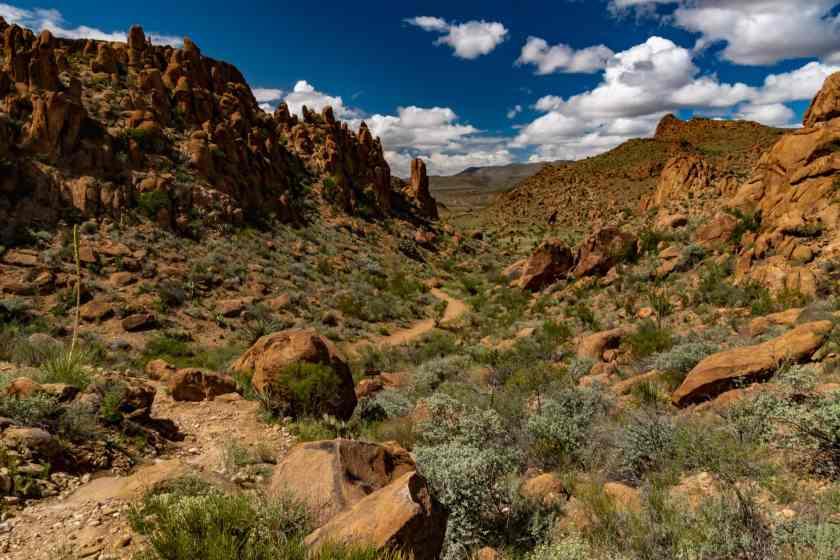 The Grapevine Hills Trail