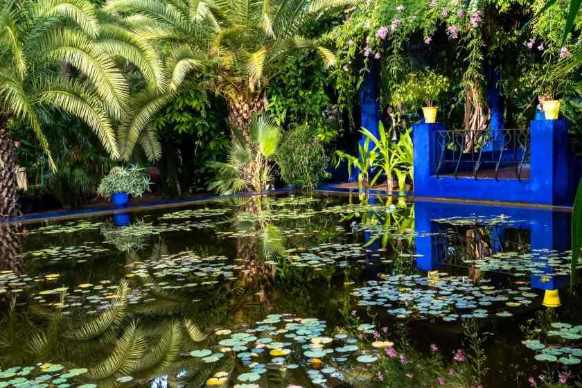 Majorelle garden in Marrakesh