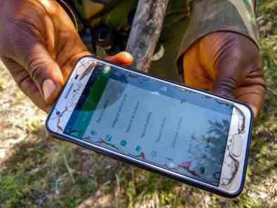 Using an app to track wildlife information in the conservancy