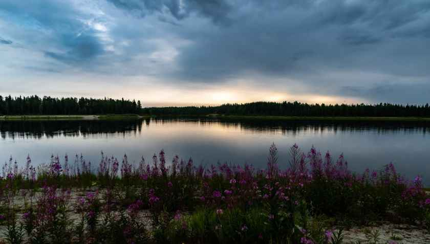 midnight at the Chena Lakes Recreations Area