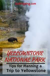 Everything you need to know to plan your best trip to Yellowstone National Park #yellowstone #wyoming