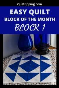 Join me for a block of the month using half square triangles