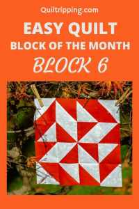 Learn how to make block 6 in my block of the month program