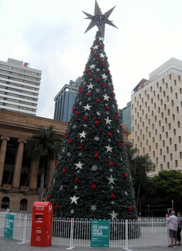 Christmas 2013 009 (583x800)