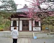 Ryoanji Temple (3)