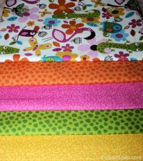 Whimsical Focus Fabric with Bright Companions
