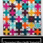 Charming Plus Quilt-A-Long