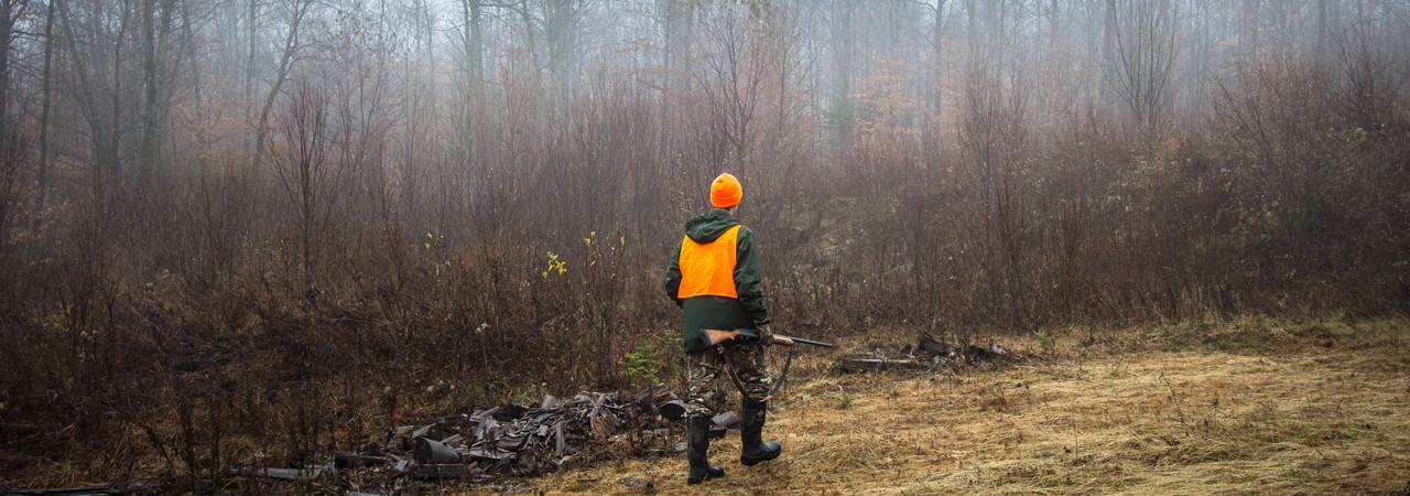 Upland-Hunting-in-Vermont