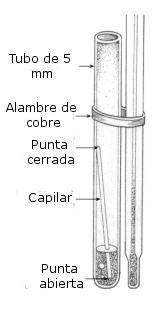 Detalle método de Siwoloboff
