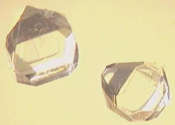 Cristales de Xilitol, atractivo por su sabor dulce