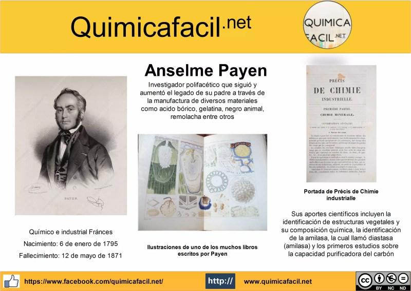 Infografia Anselme Payen
