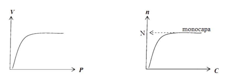 Isotermas de adsorción tipo I
