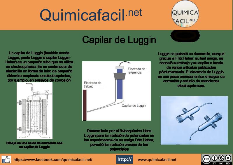 Infografía Capilar de Luggin