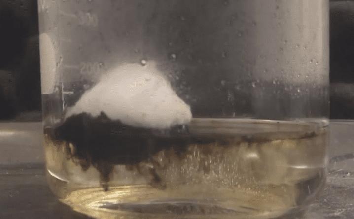 Trozo de algodón siendo devorado por una solución piraña