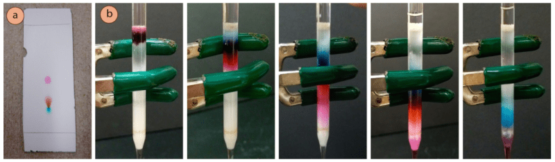 Figura 1: a) Placa de TLC de tinte púrpura, b) Elución con una columna de pipeta