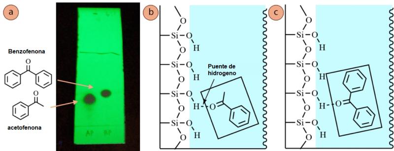 Figura 6: a) Placa de TLC de acetofenona (carril 1) y benzofenona (carril 2), utilizando mezcla de hexanos: acetato de etilo 6:1 y visualización con luz UV. Interacción con la fase estacionaria y: b) Acetofenona, c) Benzofenona.