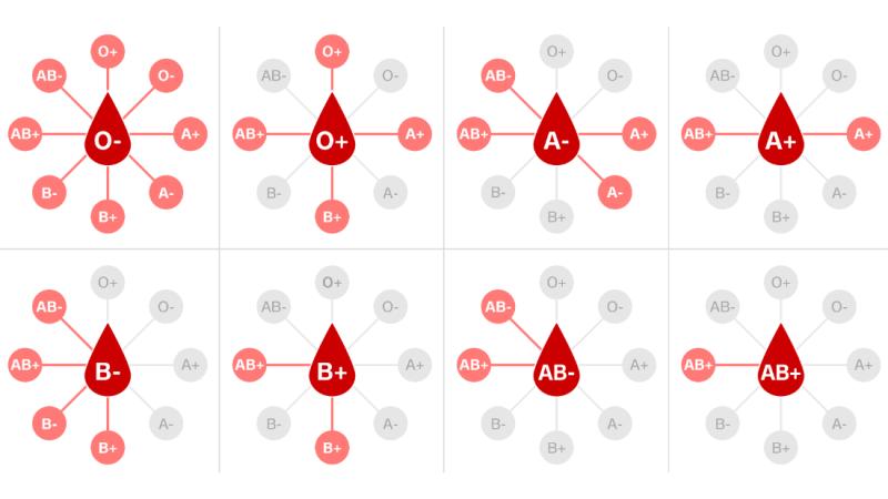 En el centro de cada figura están los donantes y en las aristas los posibles receptores. Como vemos, la sangre del tipo O negativo puede ser usada en transfusiones a personas con cualquier tipo de sangre. Fuente CNN en español