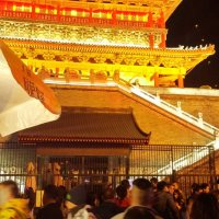 Tansy Comes Home for Lunar New Year 2016